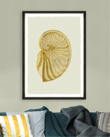Golden Seashell II – Framed Print Mindthegap