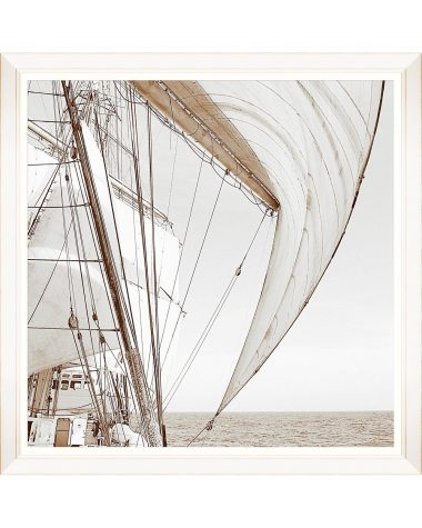 Sailing High I Framed Print