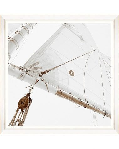 Sailing High II Framed Print
