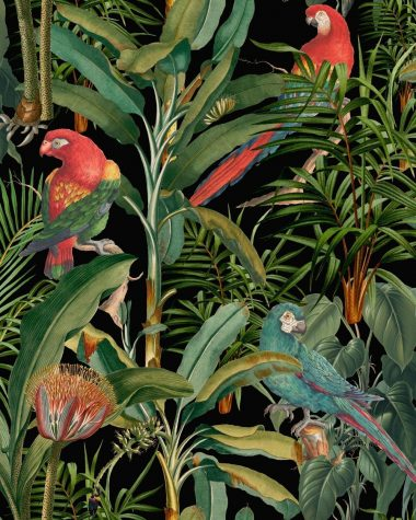 PARROTS OF BRASIL Anthracite Wallpaper MINDTHEGAP